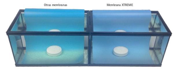 Membrana Piscinas super resistente
